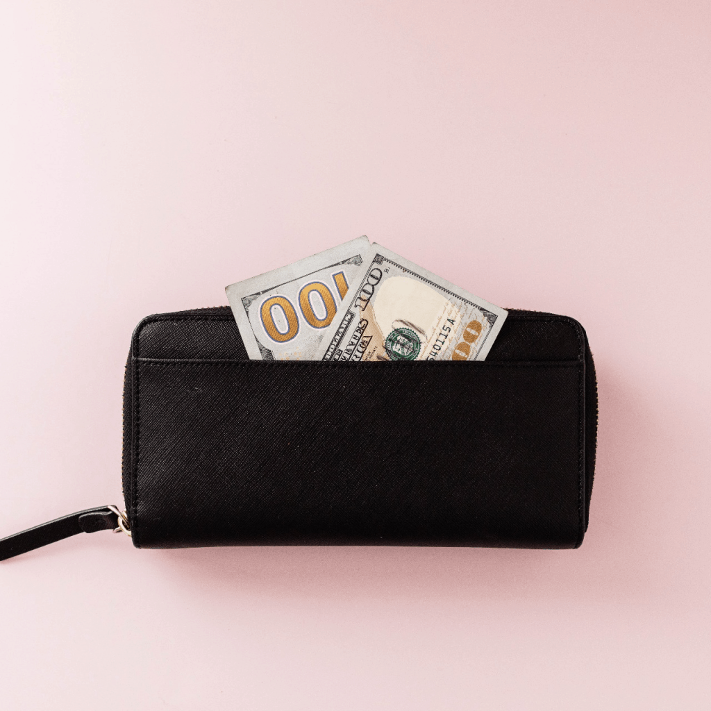 Purse with money income